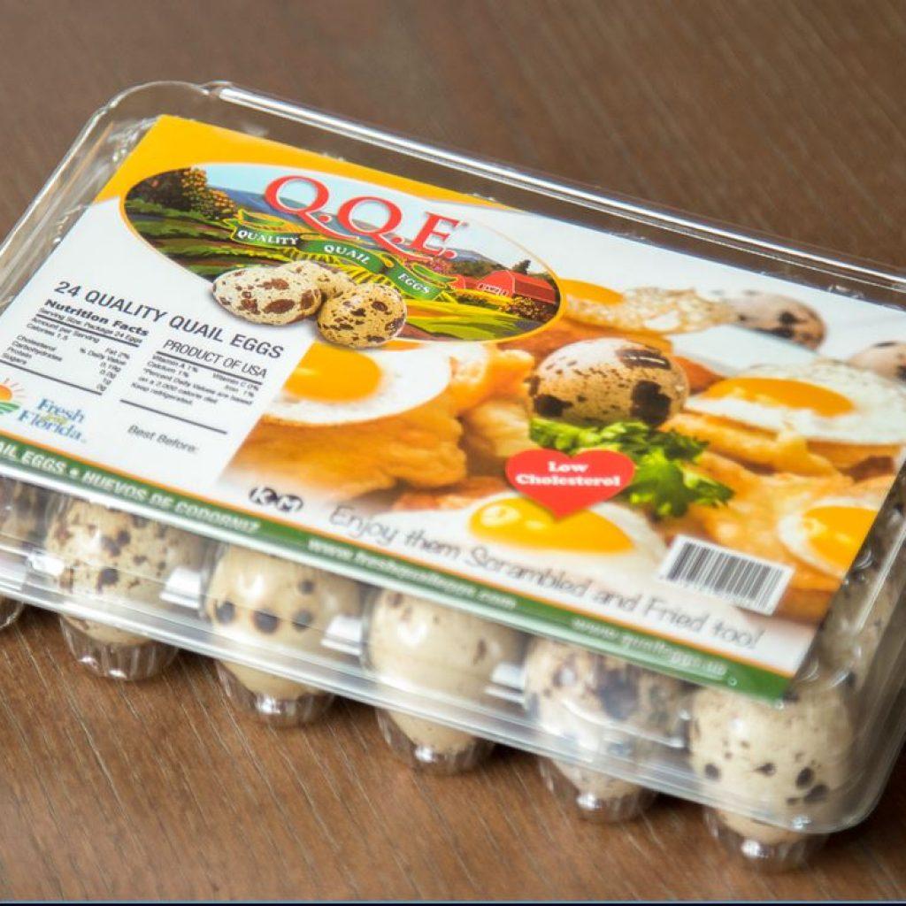 fqe-fresh-quail-eggs-pack-2